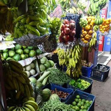 Echoppe fruits et légumes